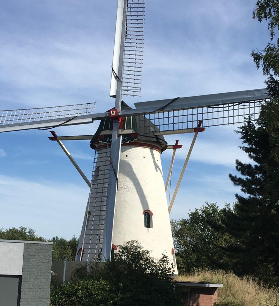 Afbeelding met lucht, buiten, boom, windmolen  Automatisch gegenereerde beschrijving